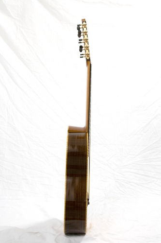 Guitar sides, guitar neck, action of the strings.JPG