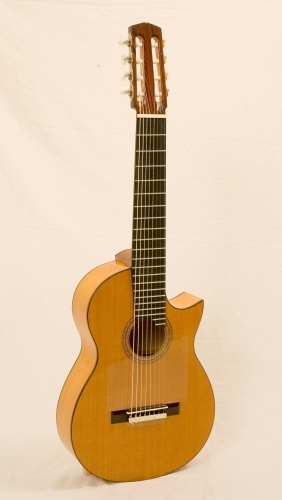Multistringed guitar, Cypress acoustic case, Western Red Cedar top, Nikolai Svishev guitarist.JPG