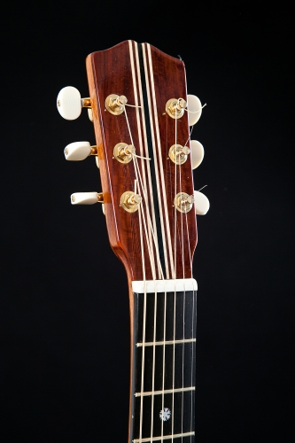 Headstock in Coccobolo
