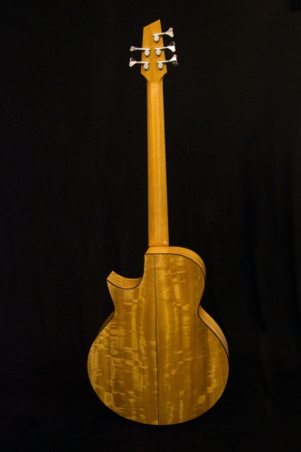 Five string electro acoustic bass, rear view.JPG