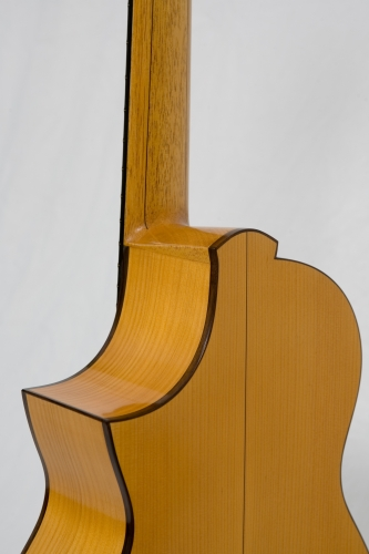 Custom Requinto guitar, cutaway, heel neck, Morgan Astruc Requinto-player.jpg