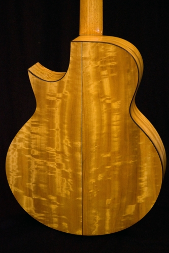 Five string electro acoustic bass, rear view, shellac finishing.JPG