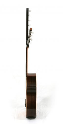 Multistring guitar (14 string), Indian Rosewood guitar sides, cutaway guitar, guitar neck.JPG