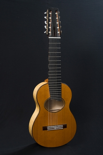10 stringed guitar, scale length 650 mm., Western Red Cedar and European Maple.jpg