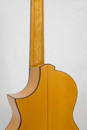 Custom Requinto guitar, cutaway, heel neck, Rosewood bindings.jpg