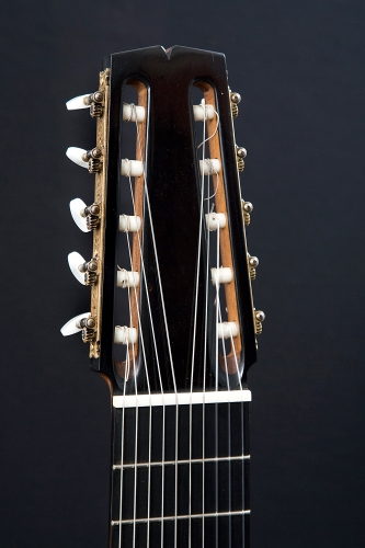 Decacorde guitar headstock, bone nut, Ebony fingerboard.jpg