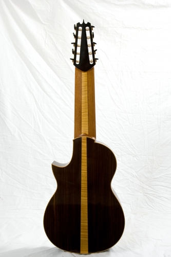 10 string guitar, concert guitar, laudarra guitar, Indian Rosewood back.JPG