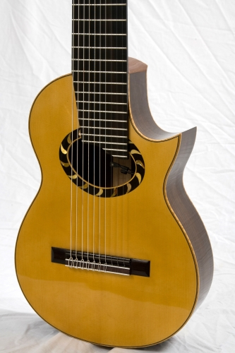 Ten string nylon guitar, electroacoustic guitar, soundhole, custom rosette.JPG